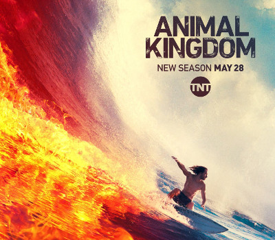 How to watch Animal Kingdom online without cable