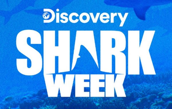 Shark Week 2019: Watch Shark Week Online Without Cable (GUIDE)