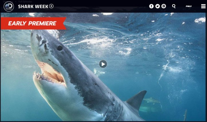 Shark Week 2018 How To Watch Shark Week Online Without